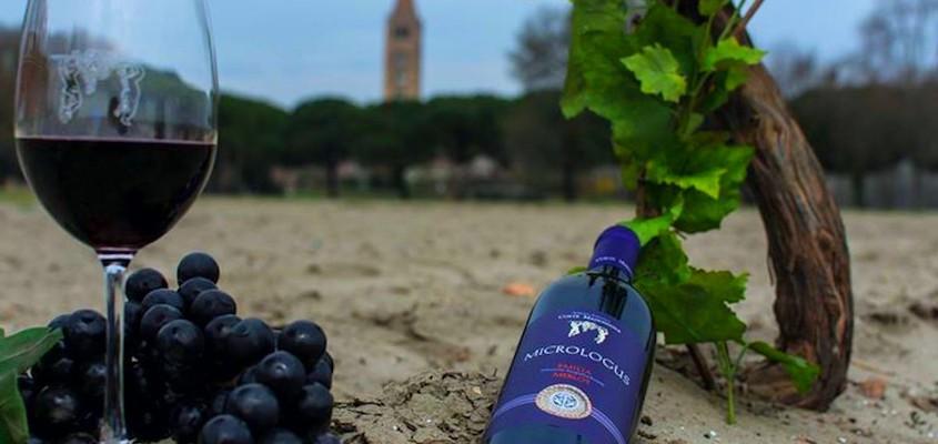 Bosco Eliceo wines - DOC