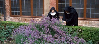 Sitios de Fe en Ferrara