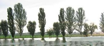 Lago Claudia