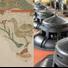 Il Museo delle Valli, il Museo della Bonifica, il Museo Civico e i capanni fotografici hanno riaperto la fruizione al pubblico. Ecco tutti gli eventi in programma!