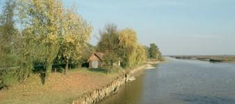 Oasi di Campotto - Parco Delta del Po