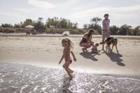 In spiaggia con i nostri amici animali