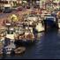 Rassegna cinematografica sul molo di Porto Garibaldi