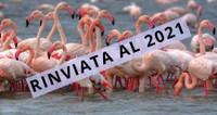 Fiera Internazionale del Birdwatching - RINVIATA AL 2021