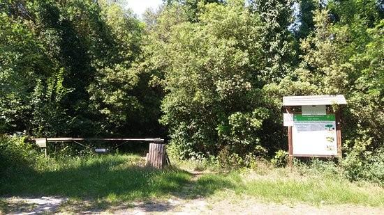 Bosco S. Giustina - Parco Delta del Po