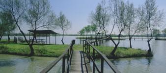 8- Pedalare tra le oasi. Da Ostellato ad Argenta